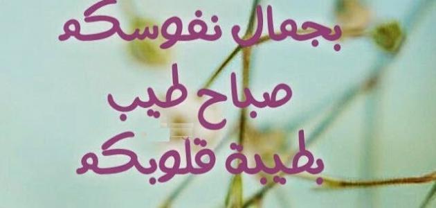 صورة كلمات صباحيه , اجمل الكلمات للصباح
