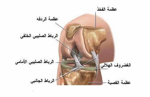 صور عملية الرباط الصليبي , مخاطر الرباط الصليبي وخطوات العملية الجراحية