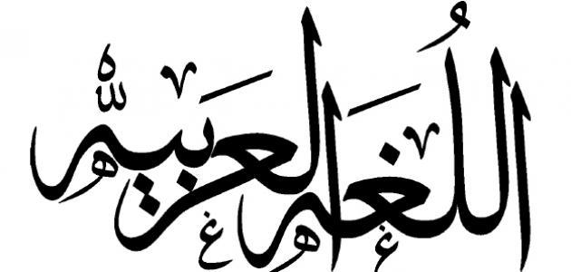 صورة معاني الكلمات العربية , طريقة البحث عن معاني الكلمات العربية الصعبة
