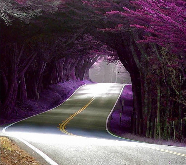 صورة اجمل صور الطبيعة , مناظر طبيعية خلابة