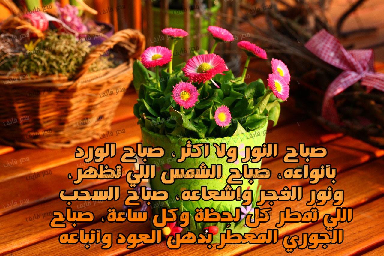 صورة اجمل صور صباح الخير , اجمل عبارات بالصور صباح الخير