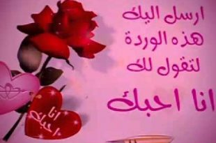 صورة صباح الورد حبيبتي , صباح الورد والياسمين