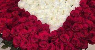 صورة صور بوكيه ورد , اجمل صور الورد