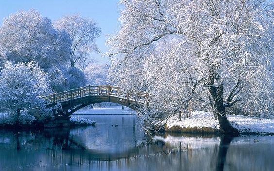 صورة صور بياض الثلج , اجمل صور عن برد الشتاء