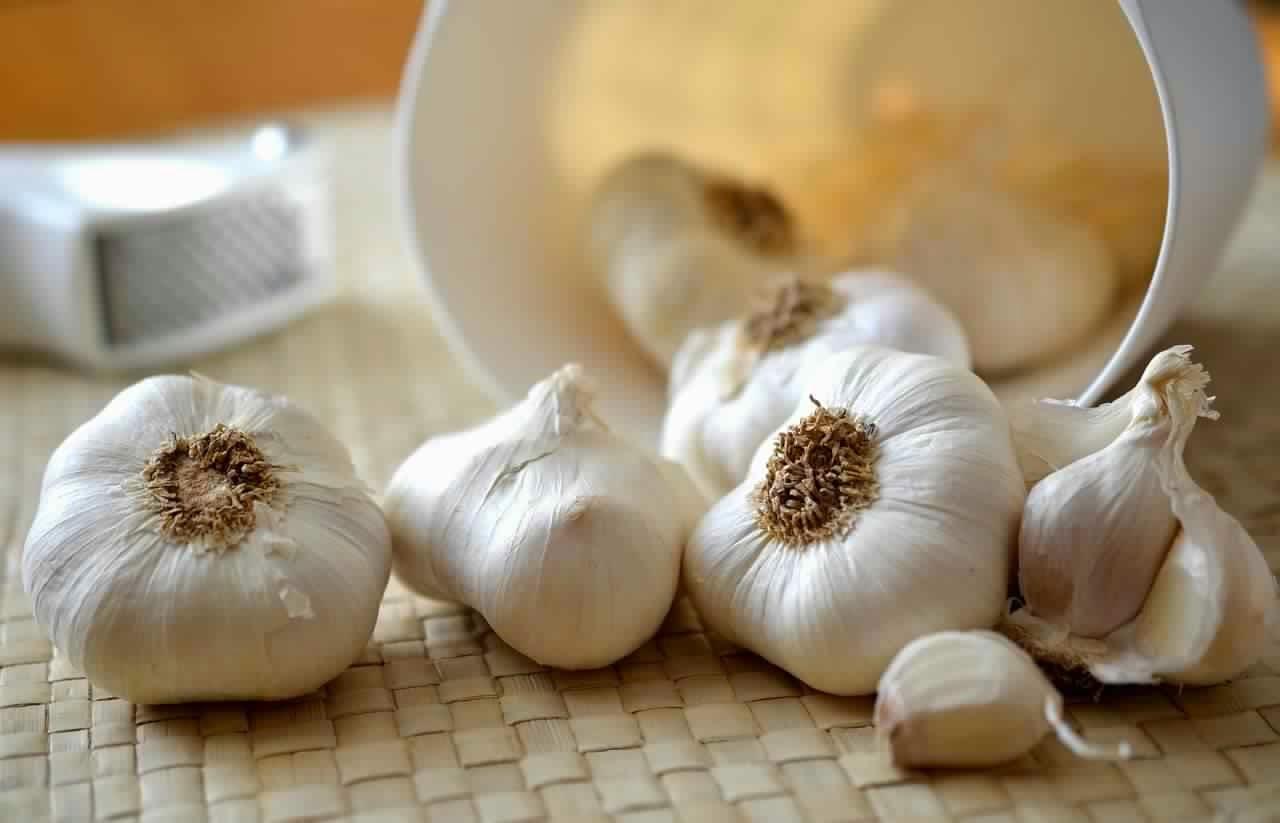 صورة فوائد اكل الثوم , افضل الفوائد للثوم