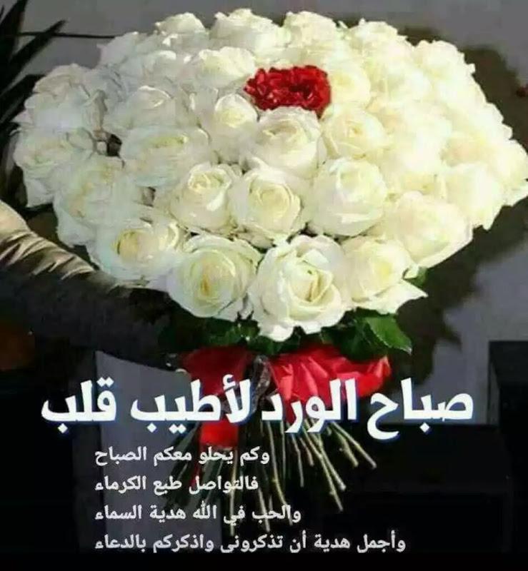 ابيات شعر عن الورد الابيض Aiqtabas Blog