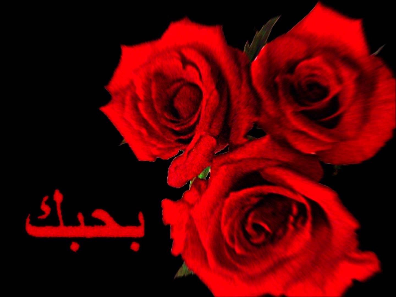 صور كلمة احبك , اجمل الصور لكلمه احبك