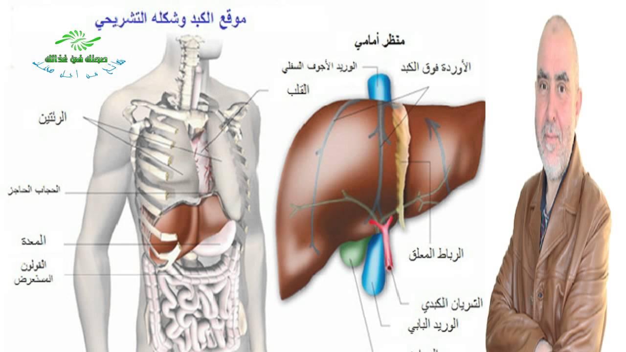 صورة اعراض مرض الكبد , اعراض تعب الكبد والمرارة