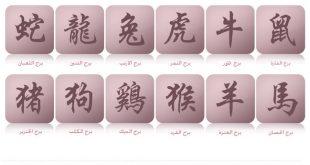 صورة كيف اعرف برجي الصيني , اعرف البرج الصينى الخاص بك