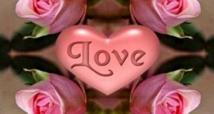 صورة صور ورد رومانسيه , اجمل الورود الجذابه