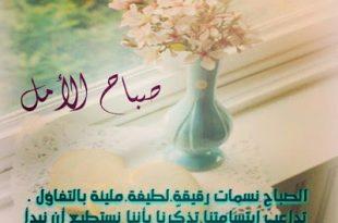 صورة كلمات الصباح والتفاؤل , عبارات صباح الخير