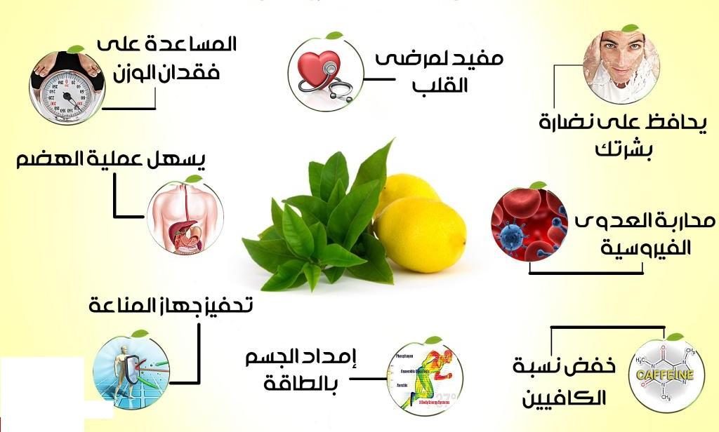 صور معلومات صحية , معلومات تفيد صحتنا