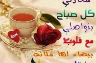 صورة صور احلى صباح , اجمل صباح على الاحباب