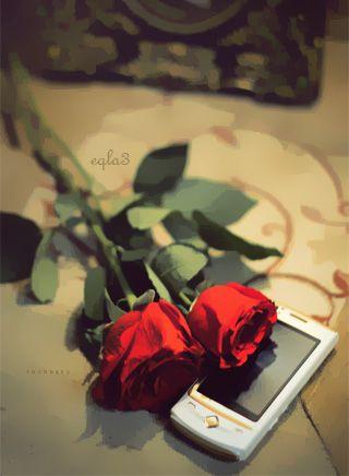 صورة صور خلفيات واتس , خلفيات رومانسية للواتس اب