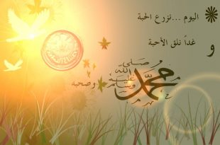 صورة اجمل الصور عن المولد النبوي الشريف , مولد سيد الخلق والاحتفال بالمولد النبوي