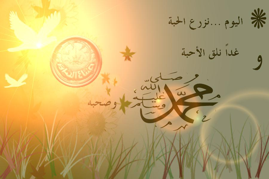 صور اجمل الصور عن المولد النبوي الشريف , مولد سيد الخلق والاحتفال بالمولد النبوي