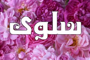 صورة معنى اسم سلوى , اجمل الاسماء الذى طابع خاص
