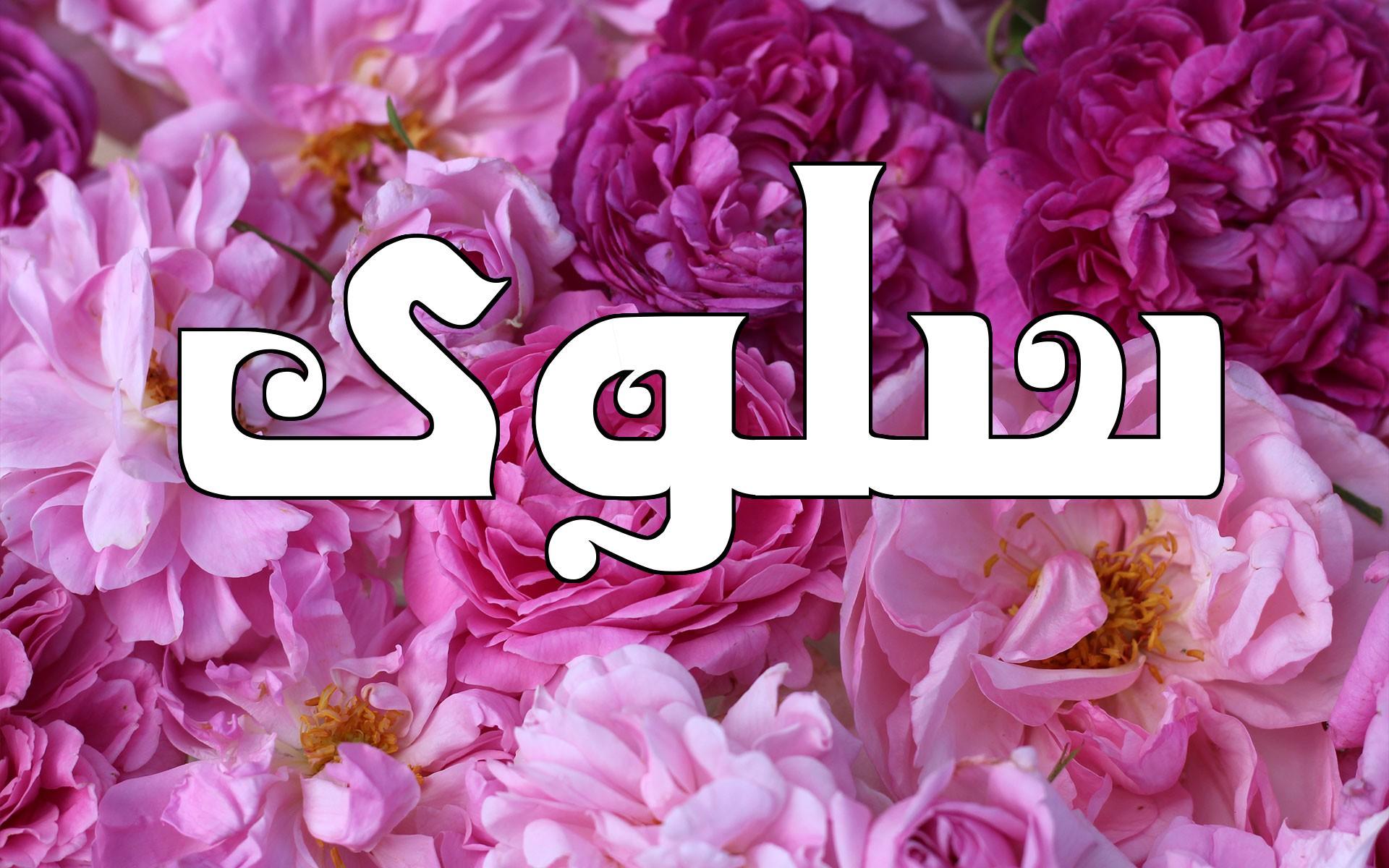 صور معنى اسم سلوى , اجمل الاسماء الذى طابع خاص