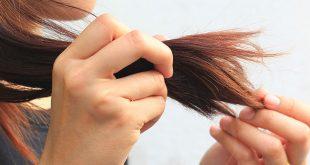 صورة علاج تقصف الشعر , الاهتمام بالشعر وعلاج التقصف والحماية منه