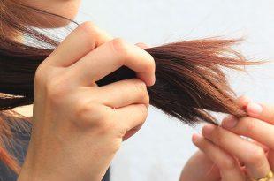صور علاج تقصف الشعر , الاهتمام بالشعر وعلاج التقصف والحماية منه