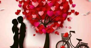 صورة كلمات رومانسية للحبيب , اجمل الكلمات لتعبر عن حبك للحبيب