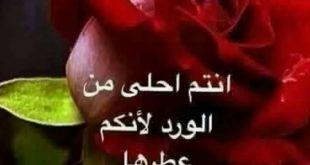 صورة مسجات مساء الورد , كلام حلو للحبيب في المساء اوعي تسبيه