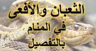 صورة تفسير رؤية الثعبان في المنام , نراه كثيرا ومخيف