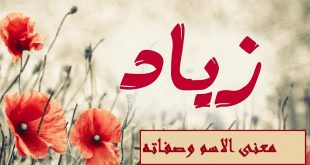 صورة معنى اسم زياد , معناه جميل جدا